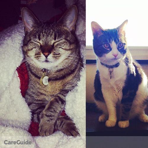 Pet Care Job Alix VanHouten's Profile Picture