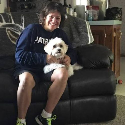 Pet Care Provider Tina Bellofatto's Profile Picture