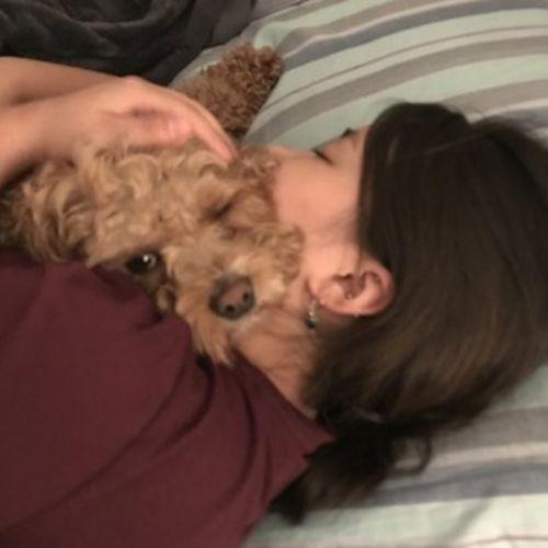 For Hire: Seasoned Pet Supervisor in Waterloo, Ontario