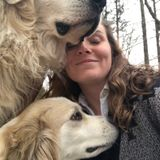 Jackson Dog Walker Searching for Being Hired in Tennessee