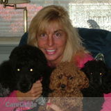 Dog Walker, Pet Sitter in Natick