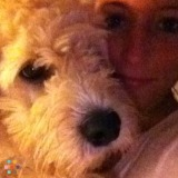 Need a trustworthy, reliable pet sitter for my lovable golden doodle puppy!
