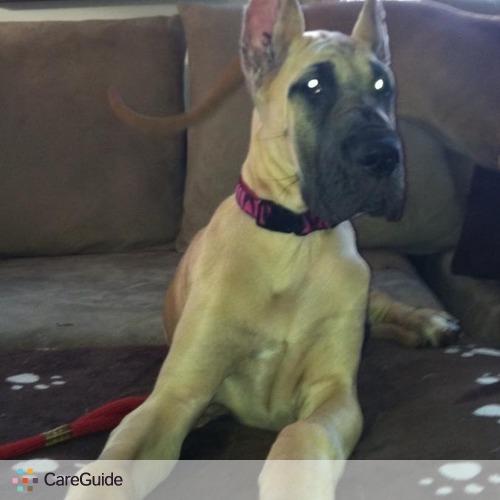Pet Care Provider Danielle Palumbo's Profile Picture