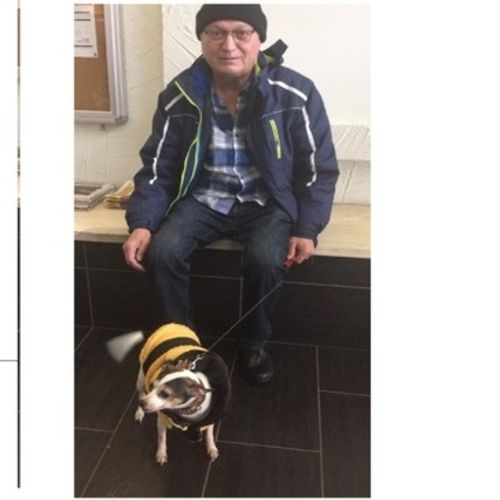 Pet Care Job  Gallery Image 1