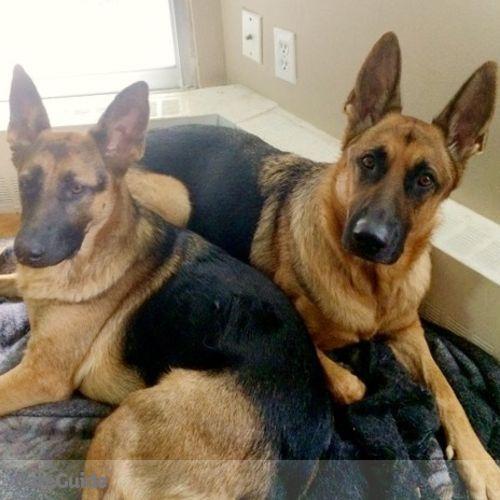 Pet Care Provider Adam Britton's Profile Picture