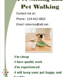 Dog Walker, Pet Sitter in Saginaw