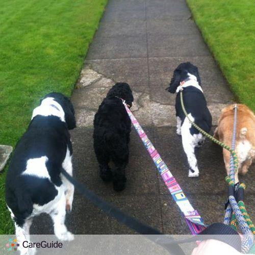 Pet Care Provider Susan C.'s Profile Picture