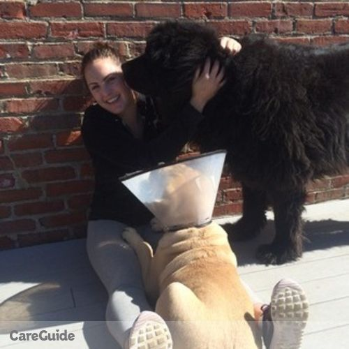 Pet Care Provider Torie O'Halloran's Profile Picture
