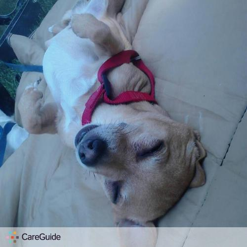 Pet Care Provider Roy B's Profile Picture