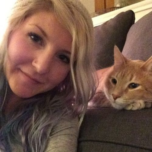 House Sitter Provider Misty D's Profile Picture