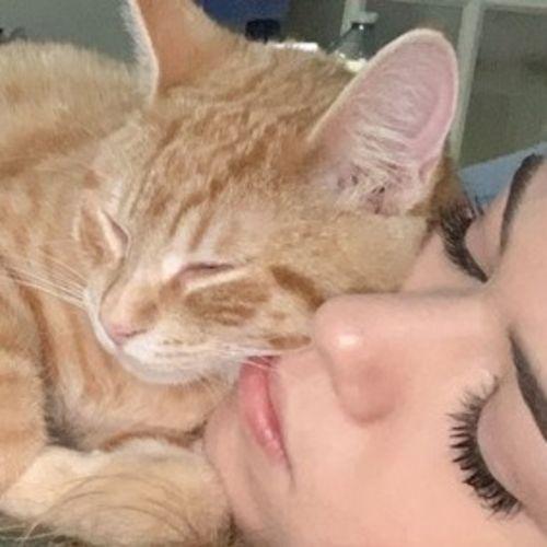 Pet Care Provider Vail K's Profile Picture