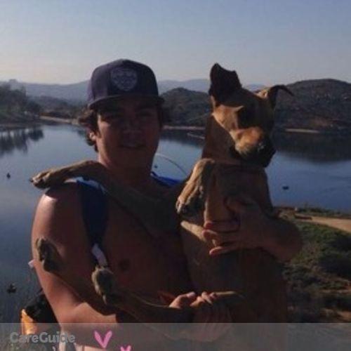 Pet Care Provider Jackson C's Profile Picture