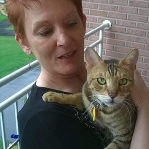 Pet Care Provider Cheryl P's Profile Picture