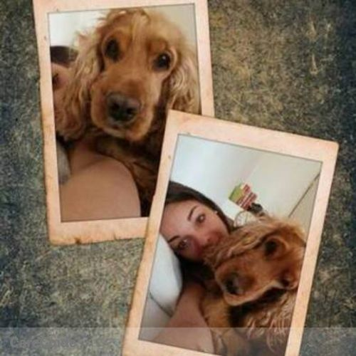 Pet Care Provider Milica Lakobrija's Profile Picture