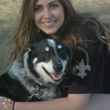Dog Walker, Pet Sitter in San Antonio