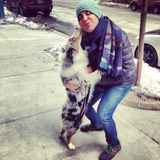 Flexible, Kind & Professional Dog Walker & Sitter here! I would love to walk your dog !