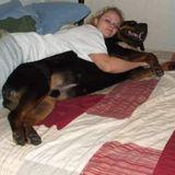 Niagara Falls Pet Service Provider Seeking Being Hired