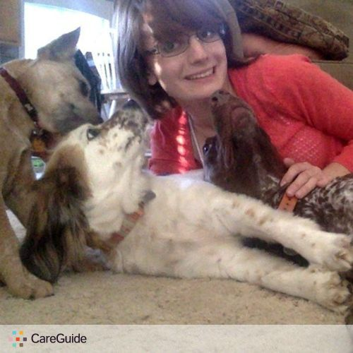 Pet Care Provider Karissa M's Profile Picture