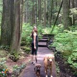 Dog Walker, Pet Sitter in Vancouver