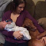 Babysitter and Petsitter