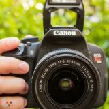 Affordable, reliable photographer available!