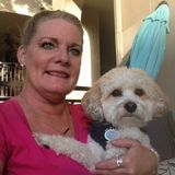 For Hire: Pet Sitting Professional in Arlington, Texas