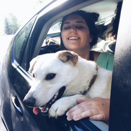 Pet Care Job Sara McLaws Gallery Image 1