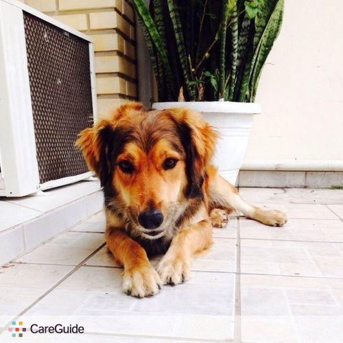 Pet Care Provider Alanis R's Profile Picture