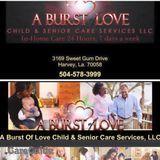 Elder Care Provider in Harvey