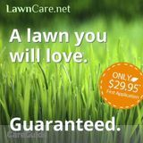 Affordable Fertilization, weed control, and lawn care (America's 1 lawn care company)