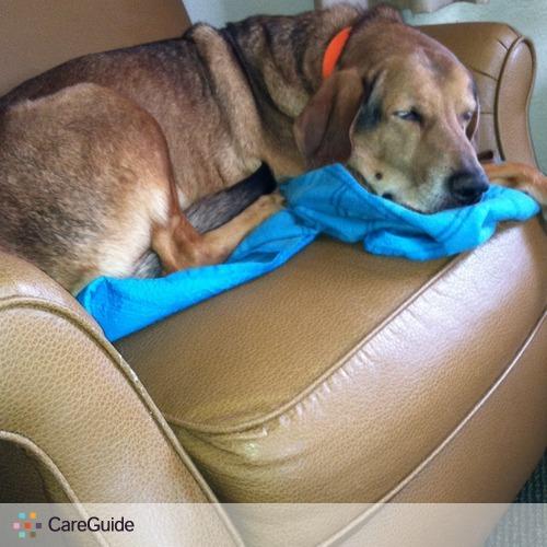 Pet Care Provider Karen Egglesto's Profile Picture