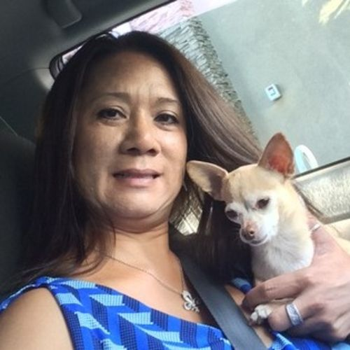 House Sitter Provider Katherine L's Profile Picture