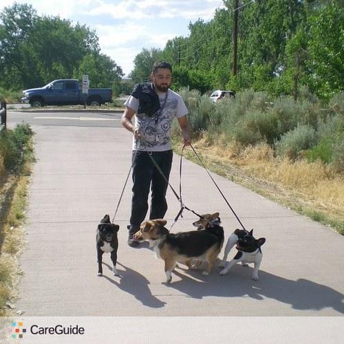 Pet Care Provider Alex L's Profile Picture