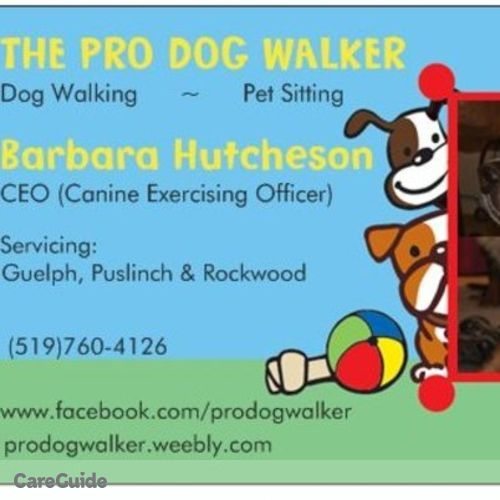 House Sitter Provider Barbara Hutcheson's Profile Picture