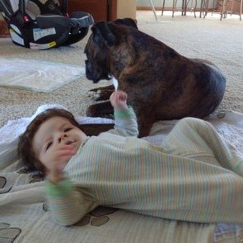 Pet Care Job Lisa Ashman Gallery Image 1