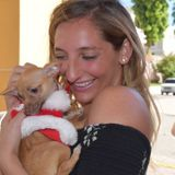 St. Bonaventure Student interested in helping out with your pets!