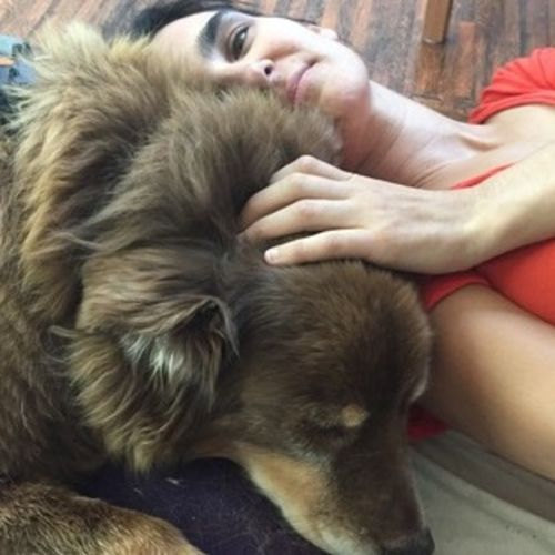 House Sitter Provider Julie P's Profile Picture
