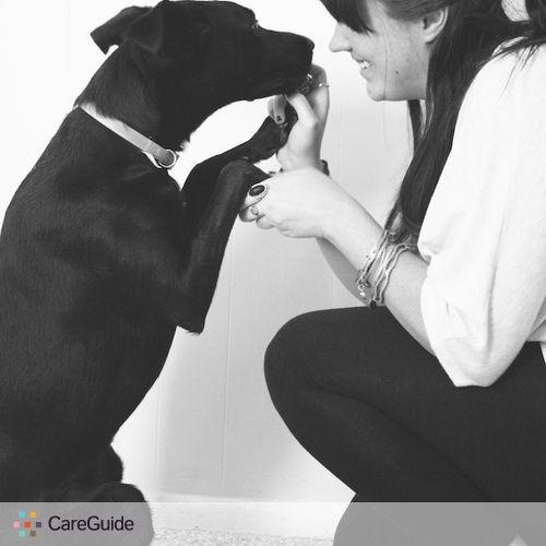 Pet Care Provider Ali K's Profile Picture