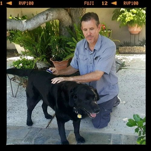 Pet Care Provider Steve W Gallery Image 3
