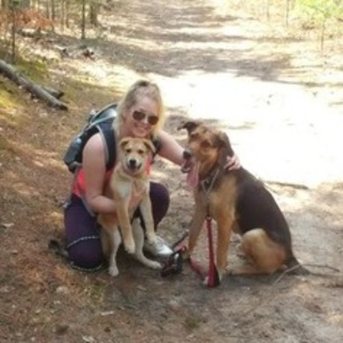 Professional Dog Walker in Stouffville, ON and surrounding cities