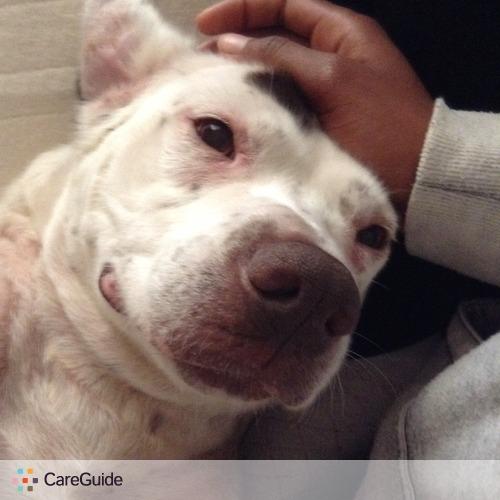 Pet Care Provider Michelle Salandy's Profile Picture