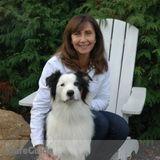 Dog Walker, Pet Sitter in Malvern