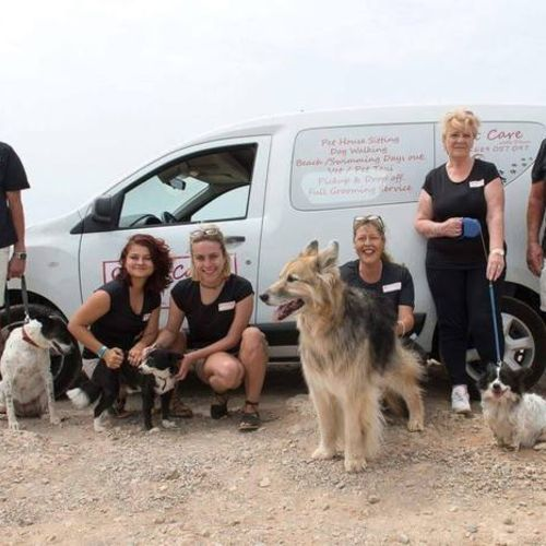 Experienced Pet Care Provider ( Special Needs Experience)