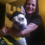 Dog Walker, Pet Sitter in Painesville