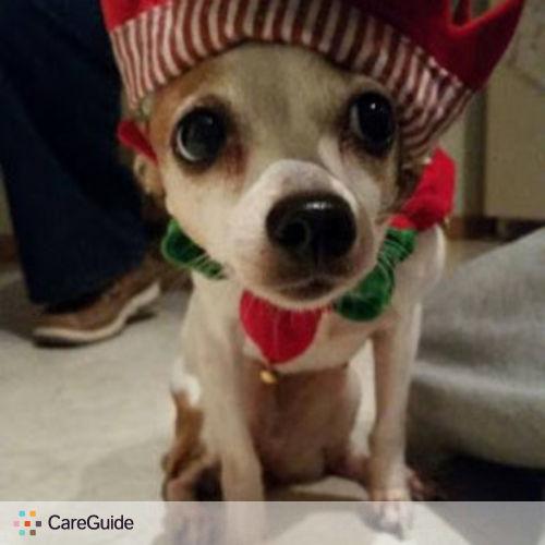 Pet Care Provider Mikaela Chandler's Profile Picture