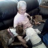 Available: Wonderful and experienced pet sitter in Joshua Tree area.