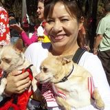 Dependable Animal Caregiver For Senior and Special Needs Pets
