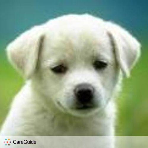 Pet Care Provider Carlos A's Profile Picture