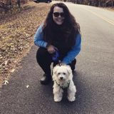 Overnight/ Daily Walking Pet Services