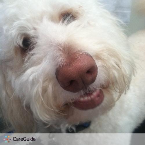 Pet Care Provider Zuri Bethea's Profile Picture